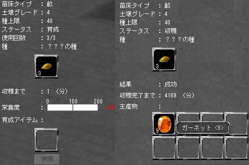 栽培記念イベント-栄養度200(199?)